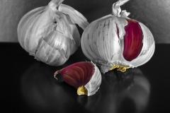CCC108_Garlic